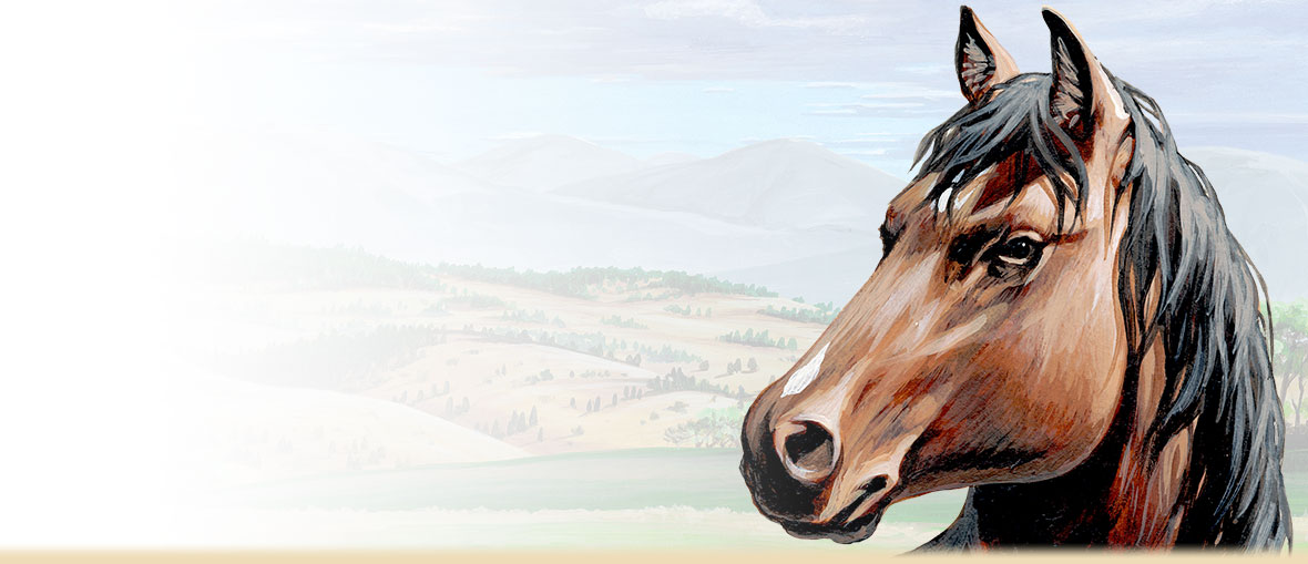 A painting of an American Mustang's head.