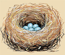 Painting of a bluebird nest.