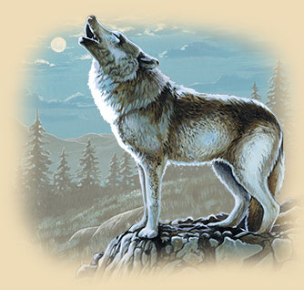 Artwork of a wolf howling at the moon.