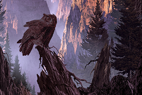 Great Horned Owl Habitat: A great horned owl in front of a canyon in the evening.
