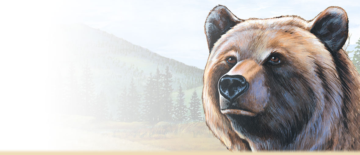 A painting of a grizzly bear head.