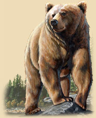 A painting of a Grizzly Bear on a rock