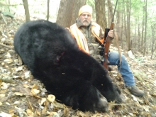 862 Pound Black Bear