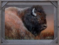 Bison Gifts