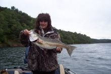 Pennsylvania Striper